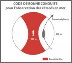 code-de-bonne-conduite3.jpg